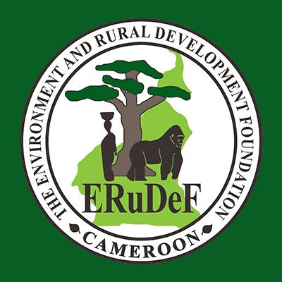Vacancy Position: Civil Engineer @ ERuDeF
