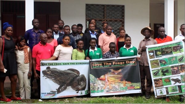 ERuDeF Institute Launches the Cameroon Amphibians Conservation Initiative