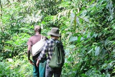 ERuDeF Institute Undertakes Maiden Butterfly Expedition on Mt Nlonako