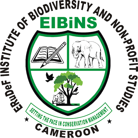 Announcement: EIBiNS Annual Environmental Day Award