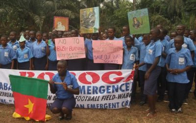 ERuDeF Institute Partners With 6 School Environmental Clubs