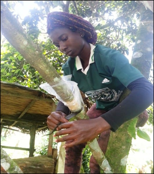 A Trip that Changed My Mind set on Agroforestry & Entrepreneurship