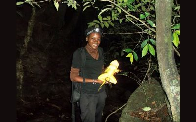 """ERuDeF University Institute Transformed Me Into Amphibian Specialist"""